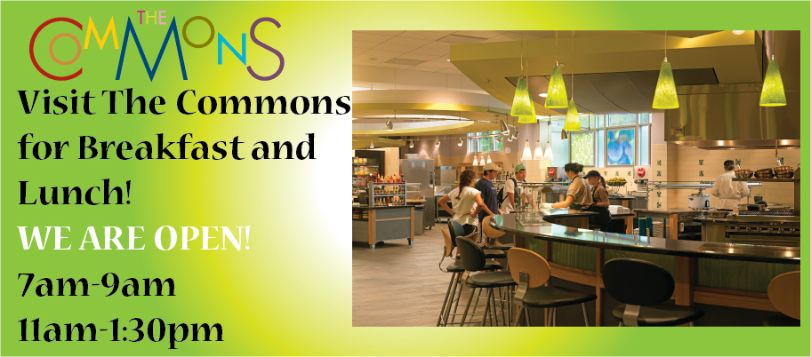 Commons_Summer