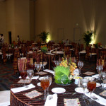 Seated Dinners / Buffets 1